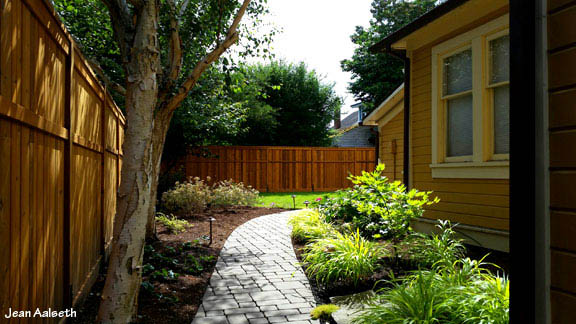 Permeable paver path through tranquil shade garden.