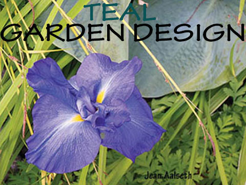 Dutch Landscapes Garden Design & Consultation